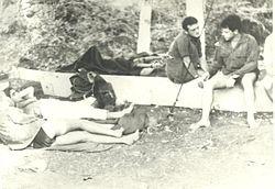 צוותי שייטת 13 מנסים לנוח  בין העצים בחוף גנוסר