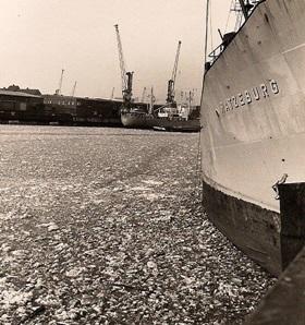 פני המים קפאו בנמל רוטרדם