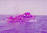 ספינת דיג מצרית במפרץ סואץ