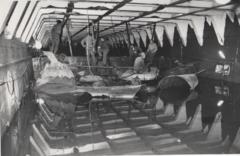 """אנשי יחידה 707 מתקנים את נזקי הפיצוץ באח""""י בת שבע במקום החפתה בחוף הצפוני באילת"""